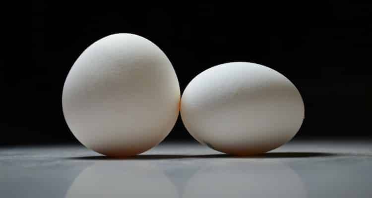 cari z'œufs titi