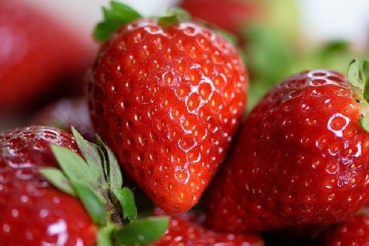 fraise pour préparer le rhum arrangé fraise