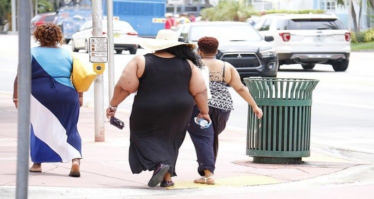 la malbouffe et l'obésité