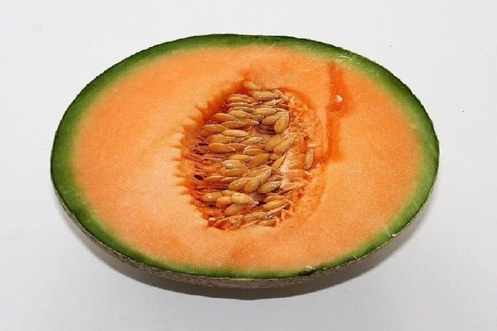 melon pour la cuisine