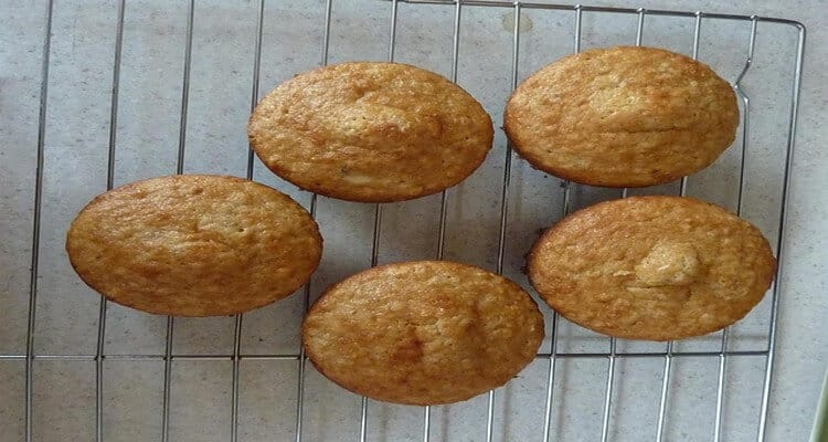 mini muffins salés, dégustation