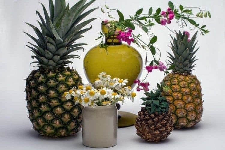 rhum ananas