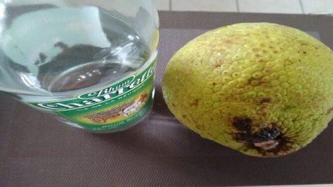 rhum arrangé fruit à pain