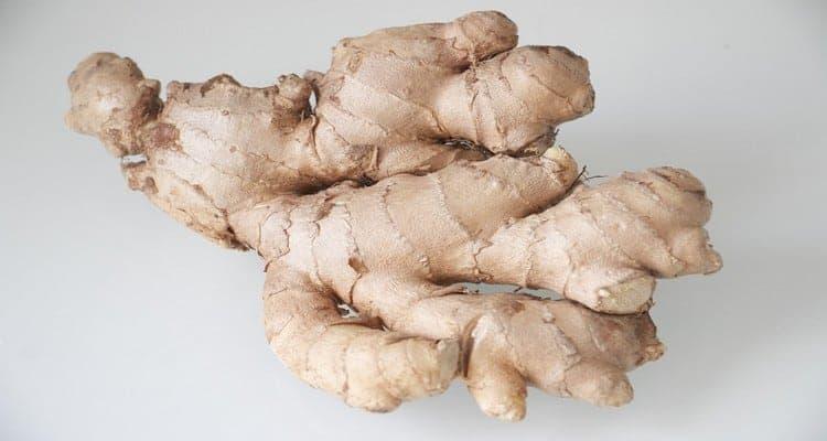 rhum gingembre racine
