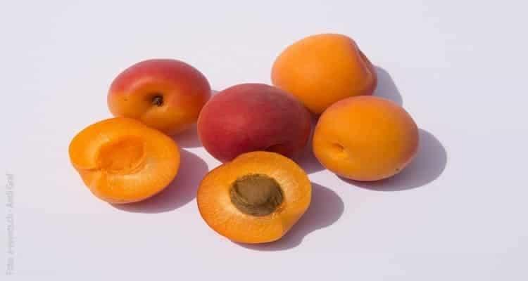 tarte aux abricots fruits