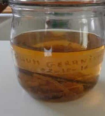rhum maison - Sucre de canne