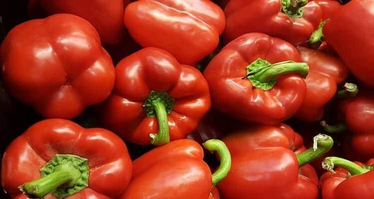 Coulis de poivrons rouges