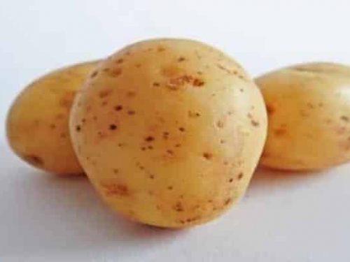 Patate - Purée