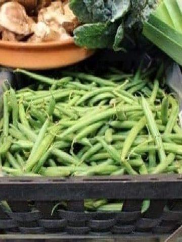 Haricots verts - Casserole de haricots verts