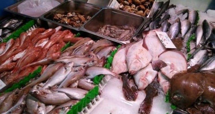 merlan poêlé banc de poissons