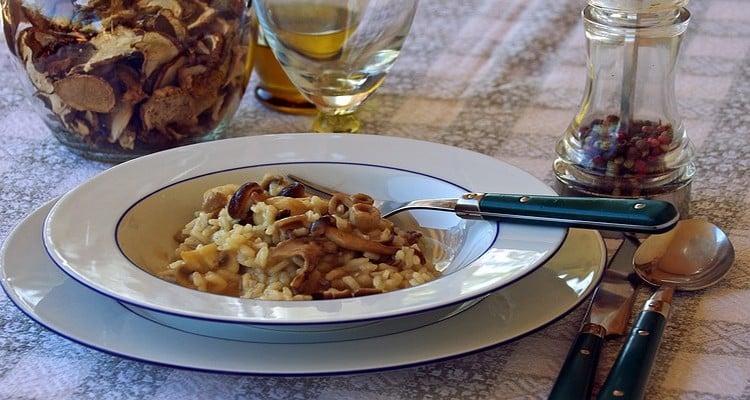 Risitto aux champignons, assiette de dégustation