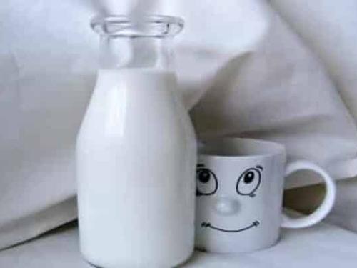 Lait - Substitut de lait