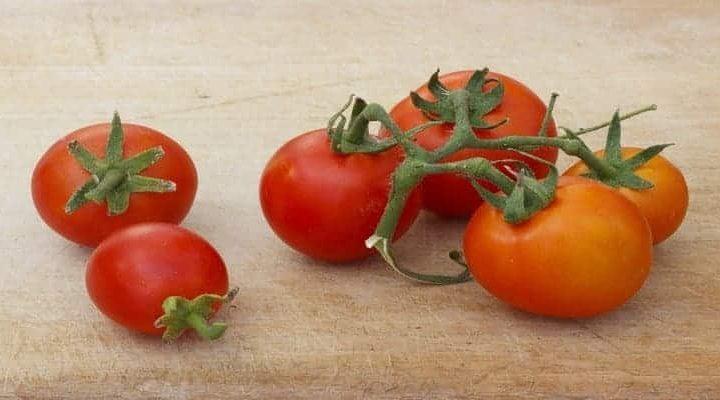 Sauce tomate rapide – Recette goût Basilic