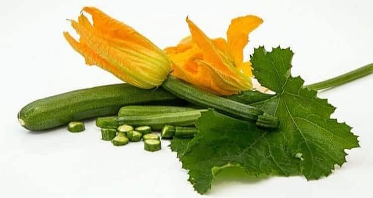 terrine de courgettes coulis poivron rouge legumes