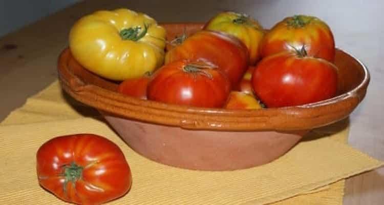 tomate provençale