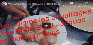noix coquille