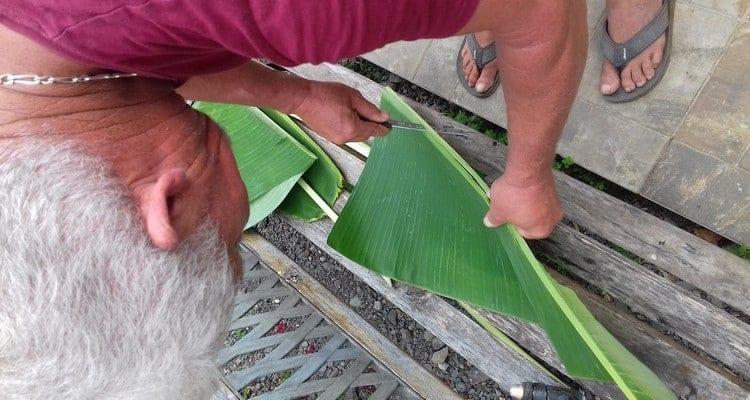 tailler la feuille de bananier