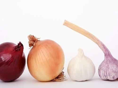 Ail - Scallion - oignon et ail pour faire les boulettes de morue