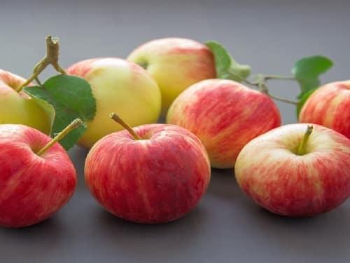 jus-de-fruits-maison-pommes