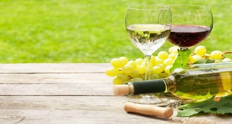 vin biologique vin biodynamique, raisin blanc