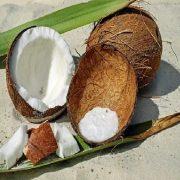 rhum arrangé noix de coco