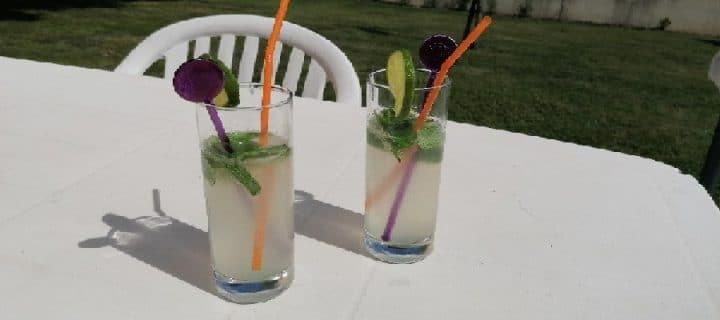 mojito limonade plein air
